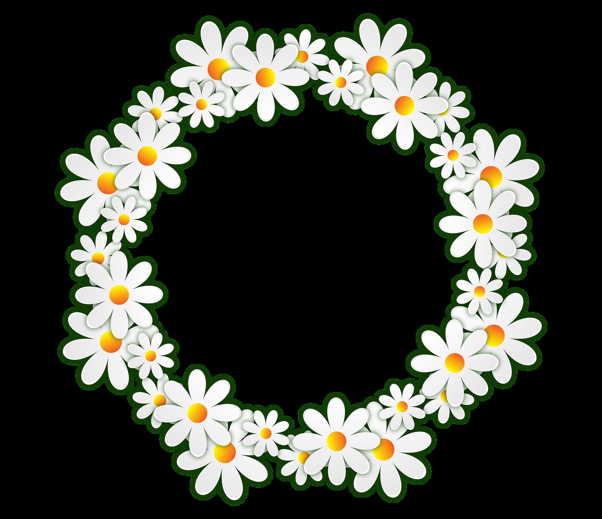 Frame hoa cúc đẹp