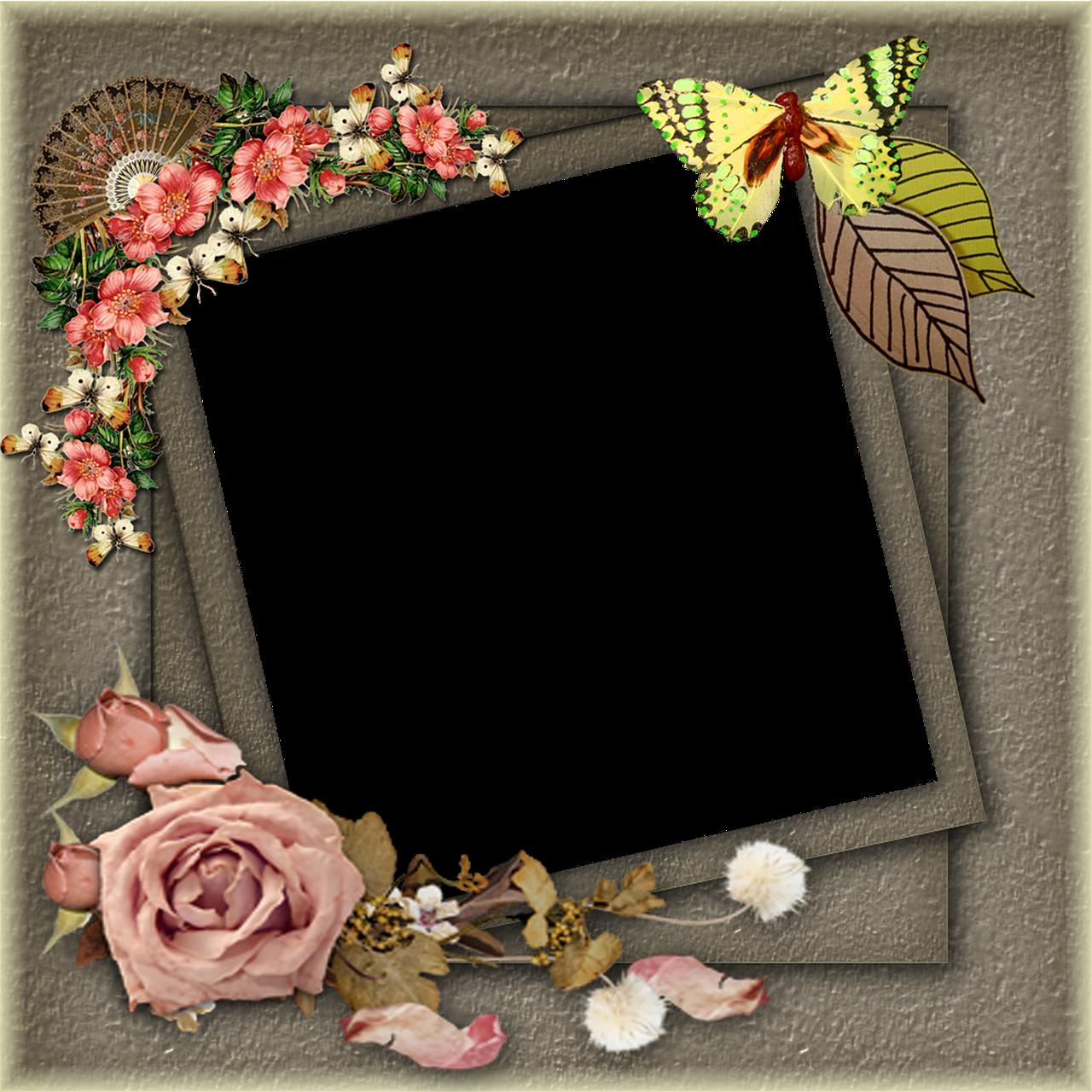 Frame khung ảnh chân dung