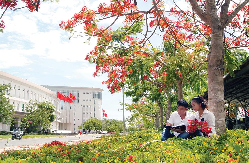 Hình ảnh hoa phượng sân trường