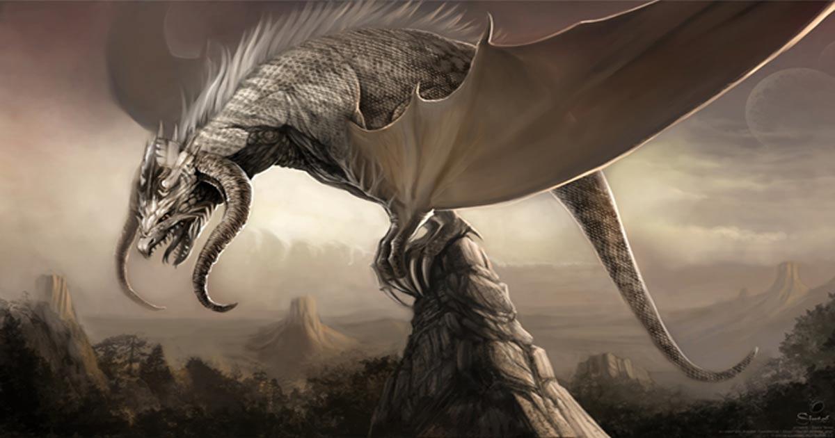 Hình ảnh rồng trắng