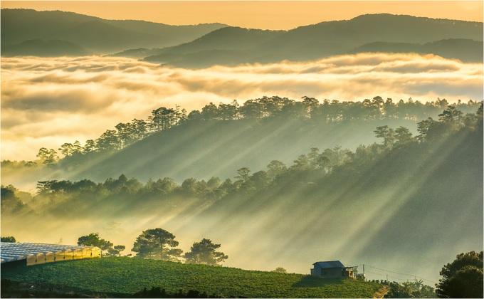 Hình ảnh bình minh trên cao nguyên