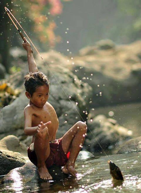 Hình ảnh tuổi thơ đi câu cá