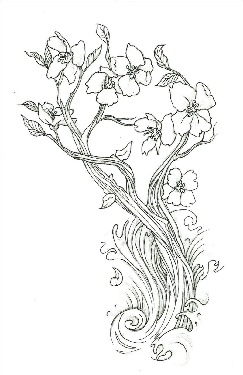 Tranh tô màu hình hoa mai