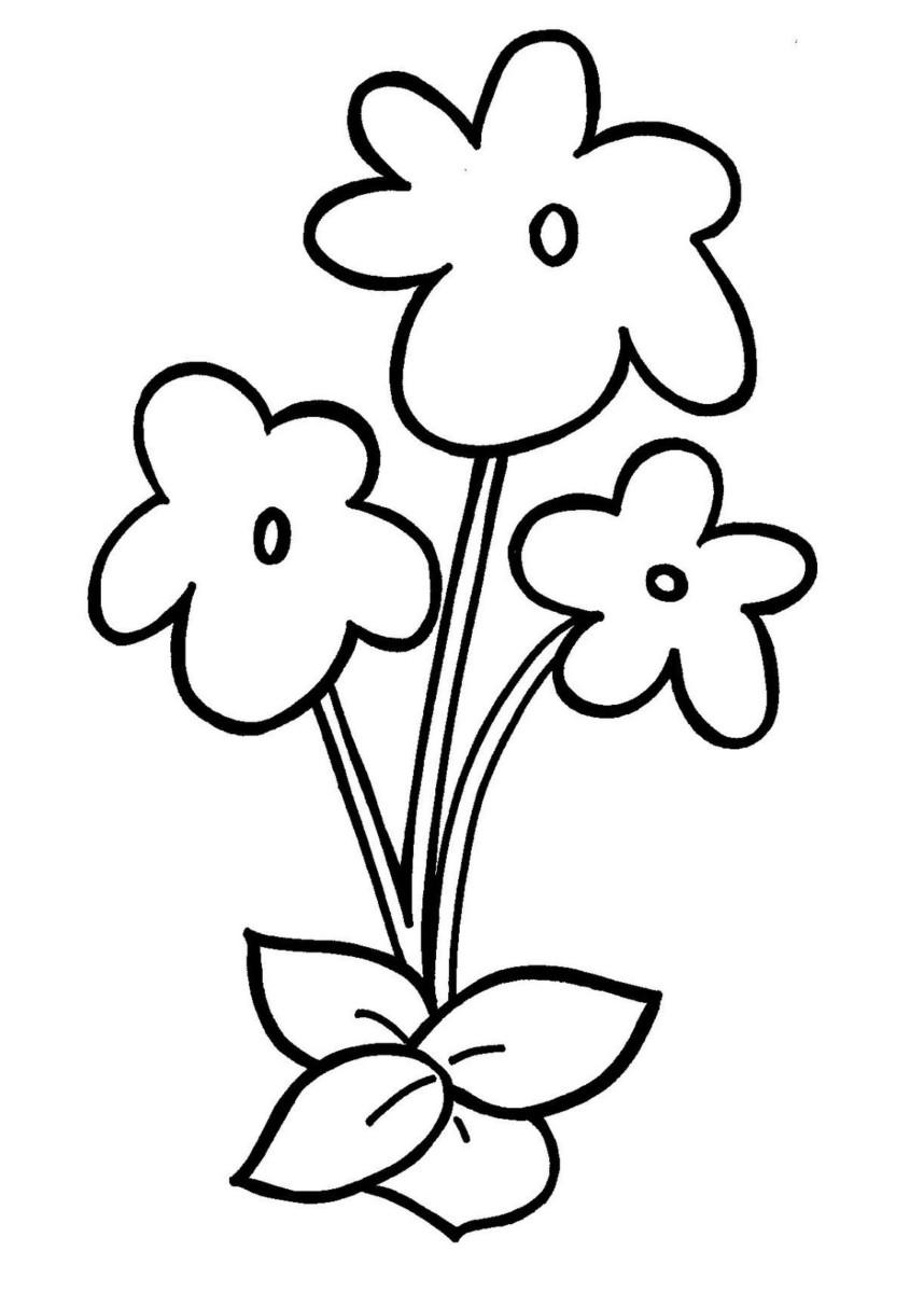 Tranh tô màu hoa mai đơn giản nhất