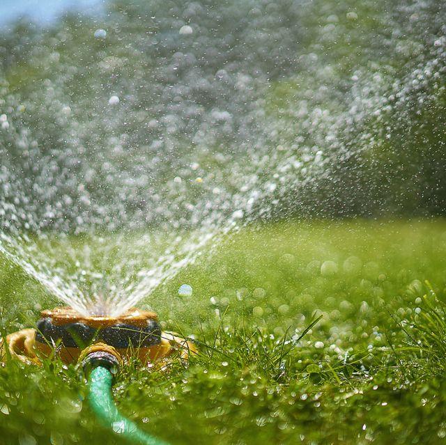 Hình ảnh vòi phun nước