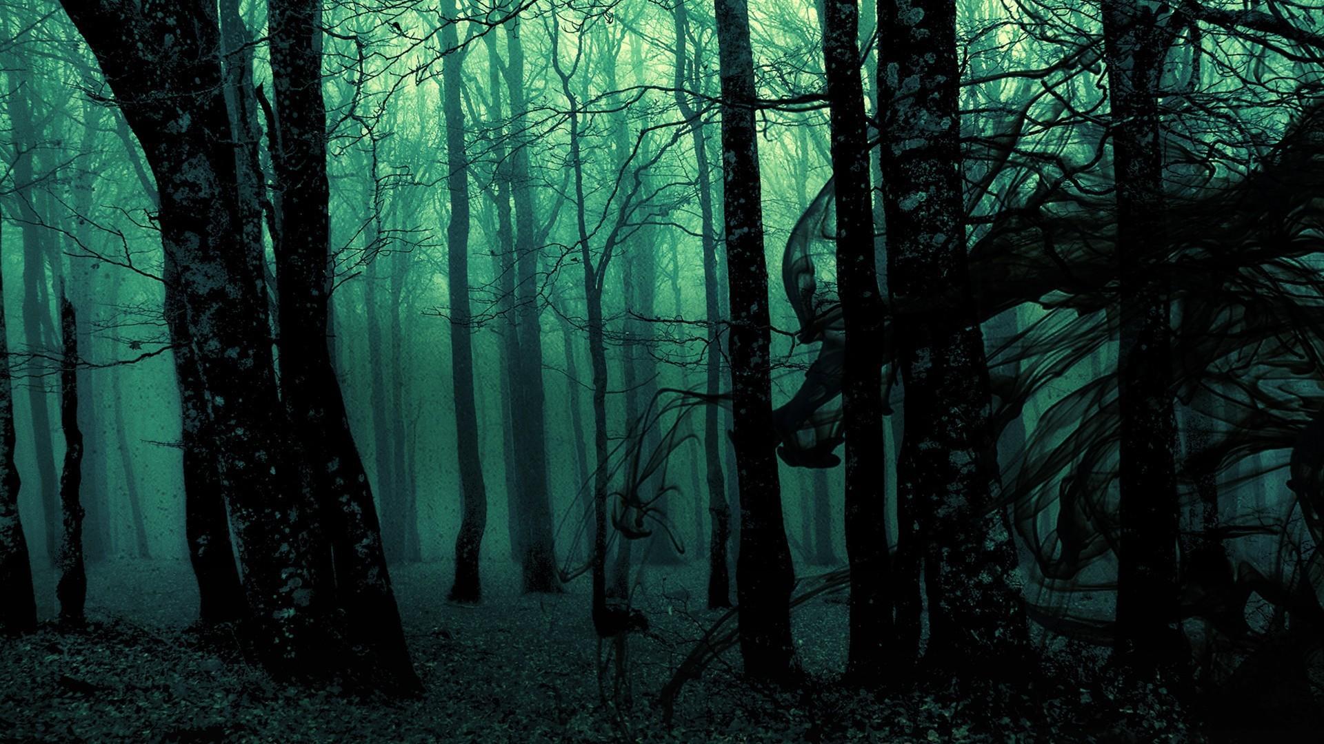 Hình nền khu rừng kinh dị