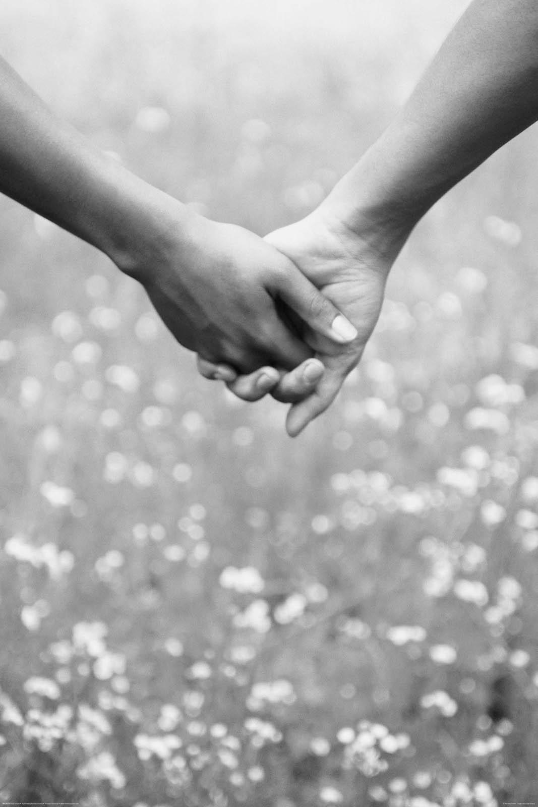 Ảnh đẹp nắm tay giữa cánh đồng hoa