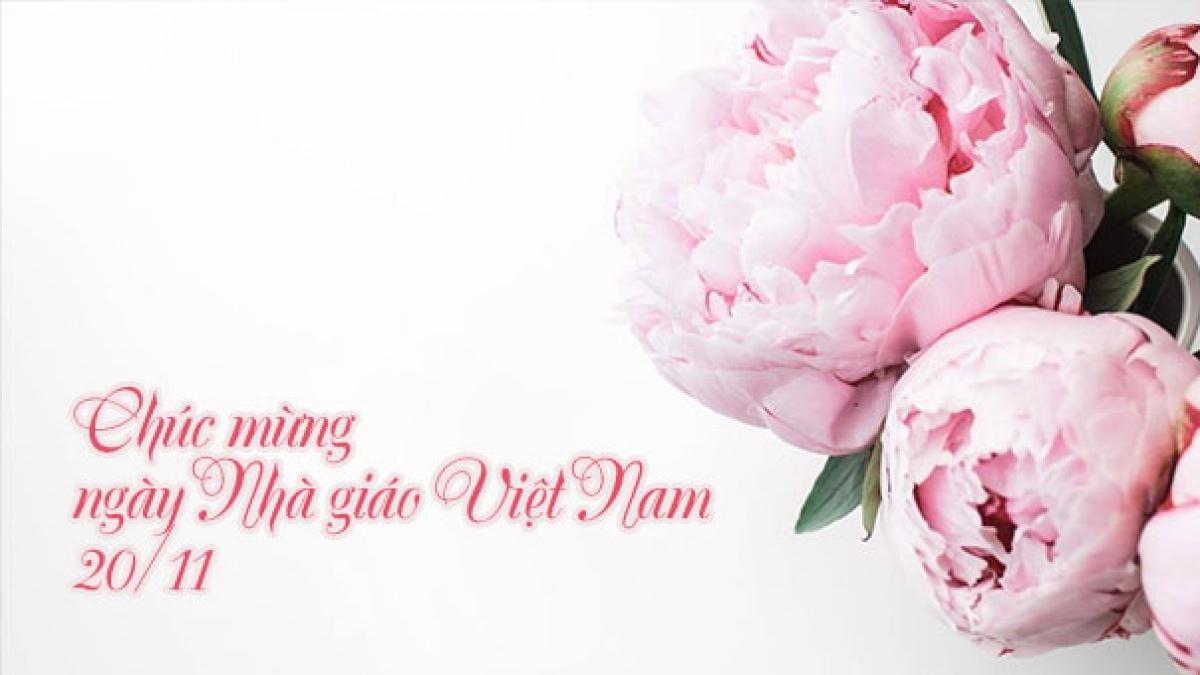 Ảnh ngày nhà giáo Việt Nam đẹp