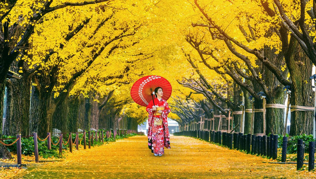 Du lịch Nhật Bản để ngắm mùa thu lá vàng nơi này