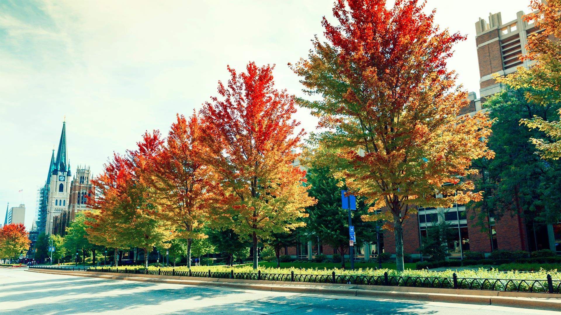 Đường phố Milwaukee khi mùa thu về