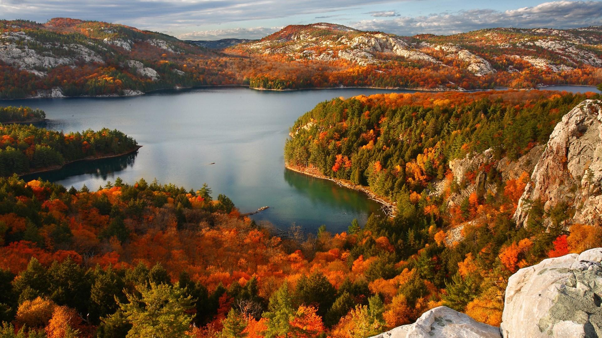 Hình ảnh mùa thu lá vàng hồ nước trong vắt