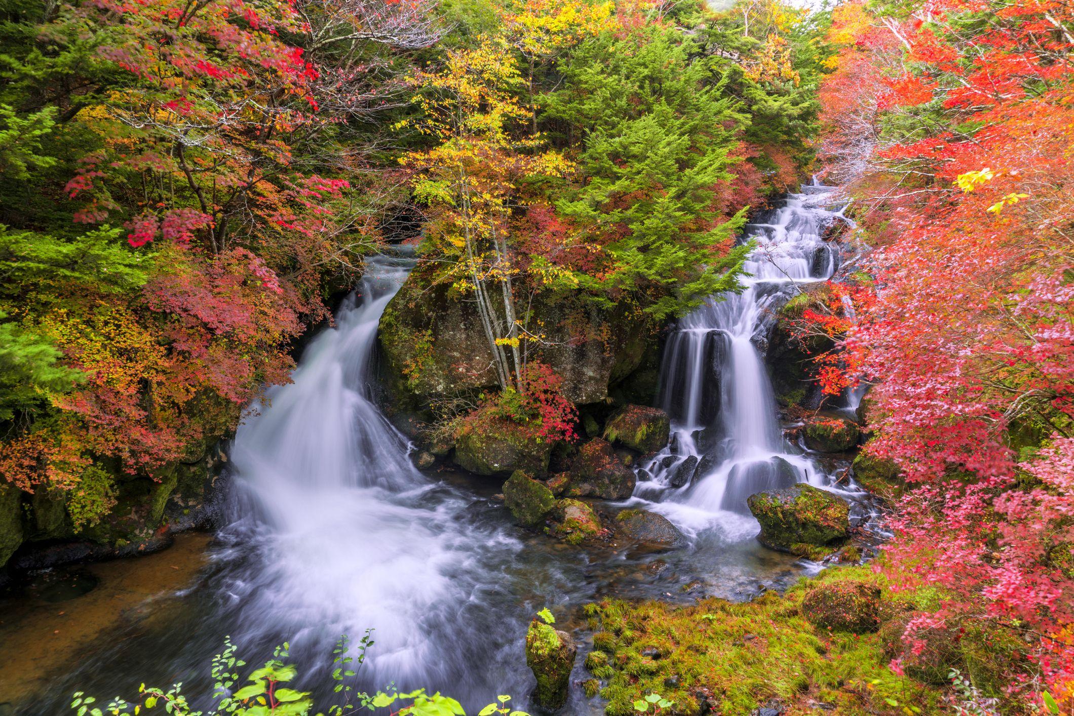 Hình ảnh thác nước rất đẹp trong rừng thu