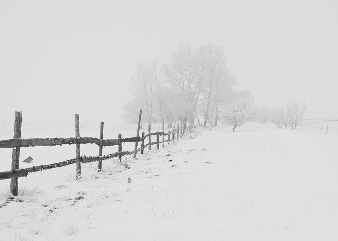 Mùa đông trắng tuyết ở vùng ngoại ô