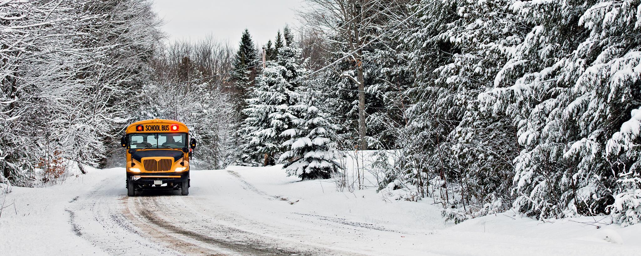 Mùa đông về tuyết phủ trắng xóa