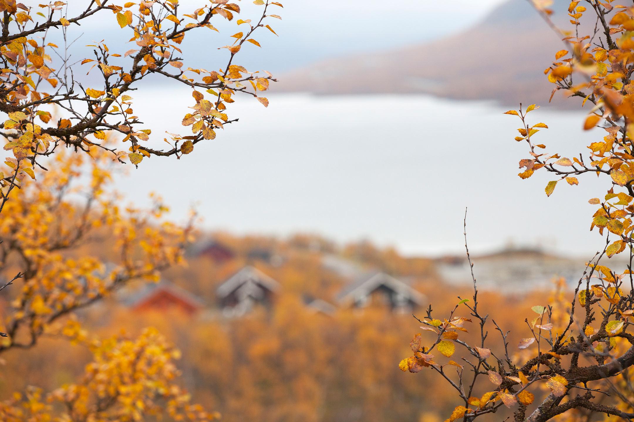 Mùa thu bên hồ nước xa xa