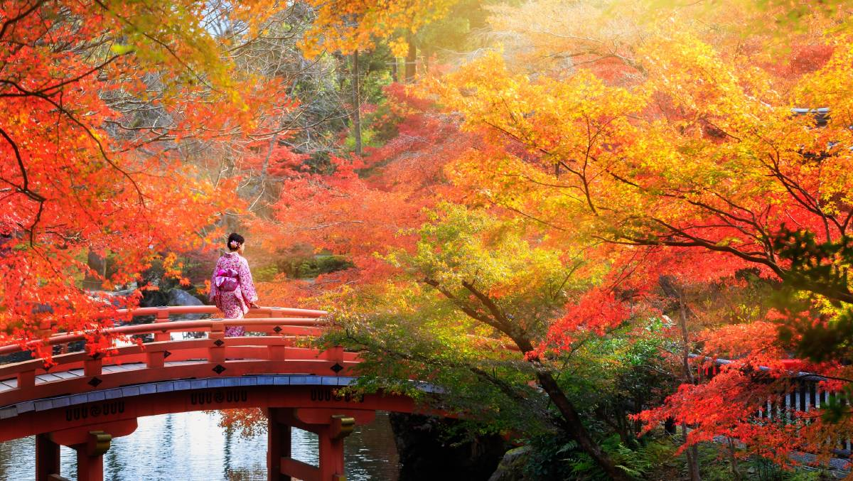 Mùa thu lá vàng cầu nhỏ bắc ngang
