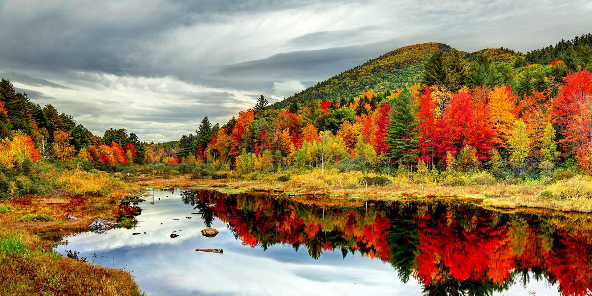 Mùa thu lá vàng ngả màu thơ mộng