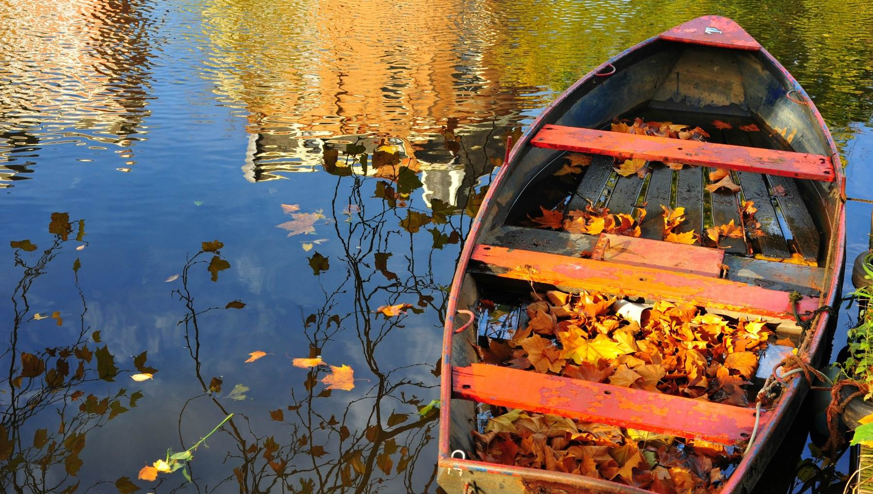 Mùa thu mặt nước trong vắt, con thuyền đựng đầy lá vàng