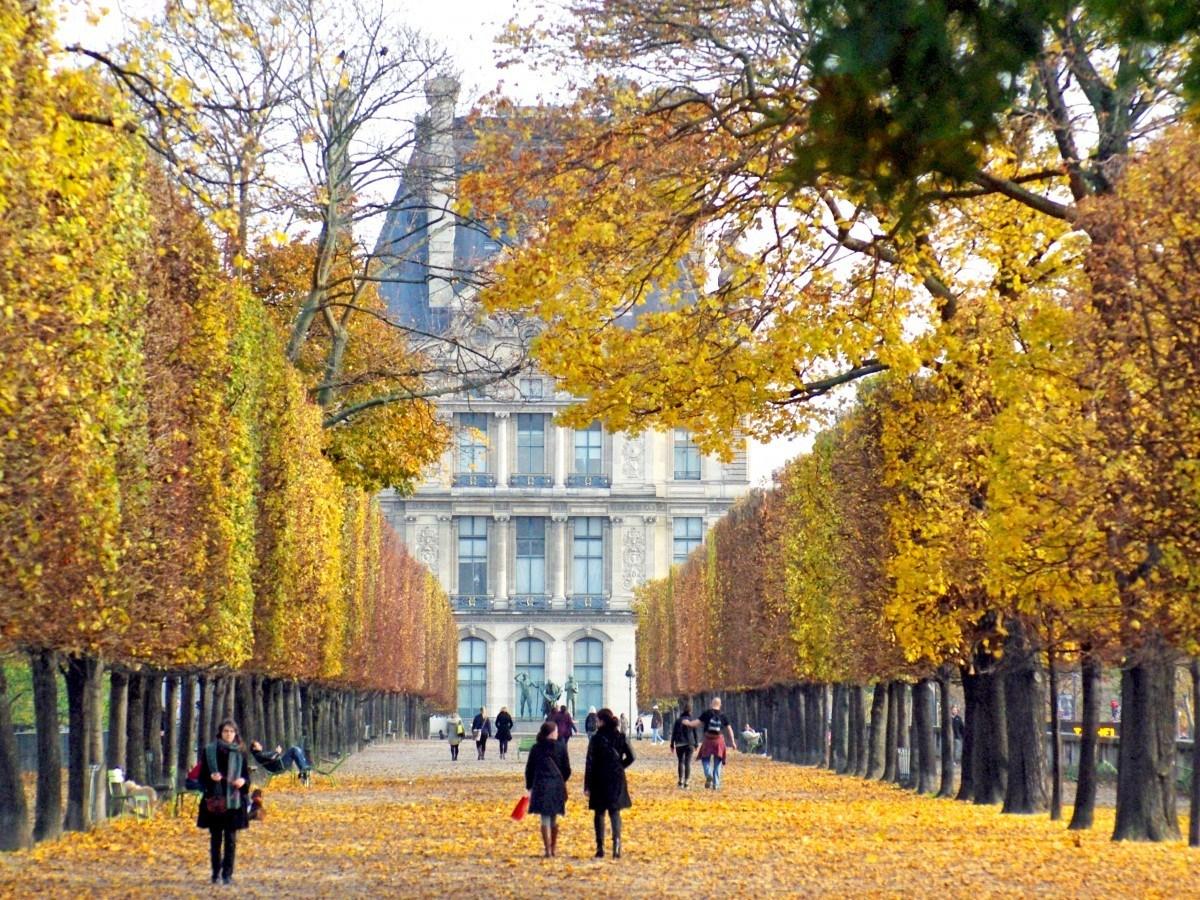 Mùa thu ở một con đường tại Pháp