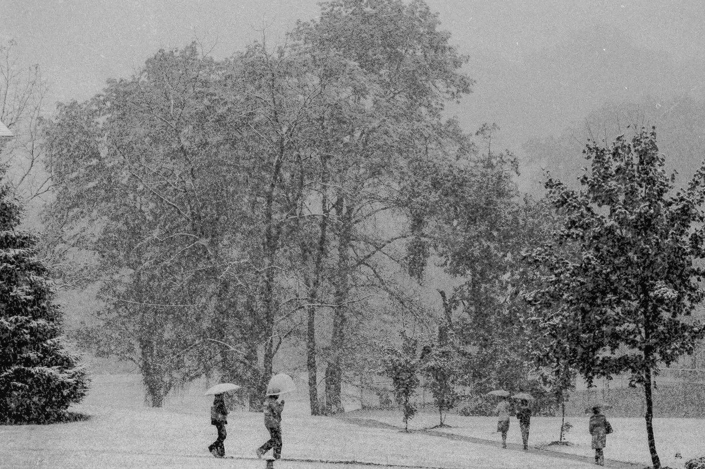 Tuyết phủ kín không gian vào mùa đông