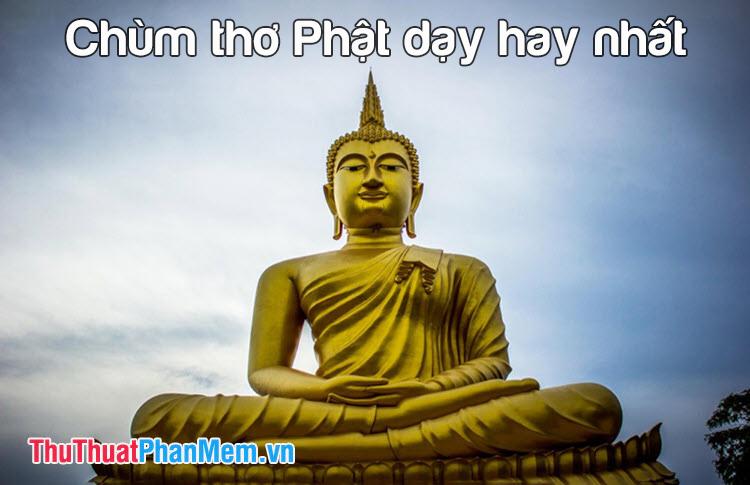 Chùm thơ Phật dạy hay nhất
