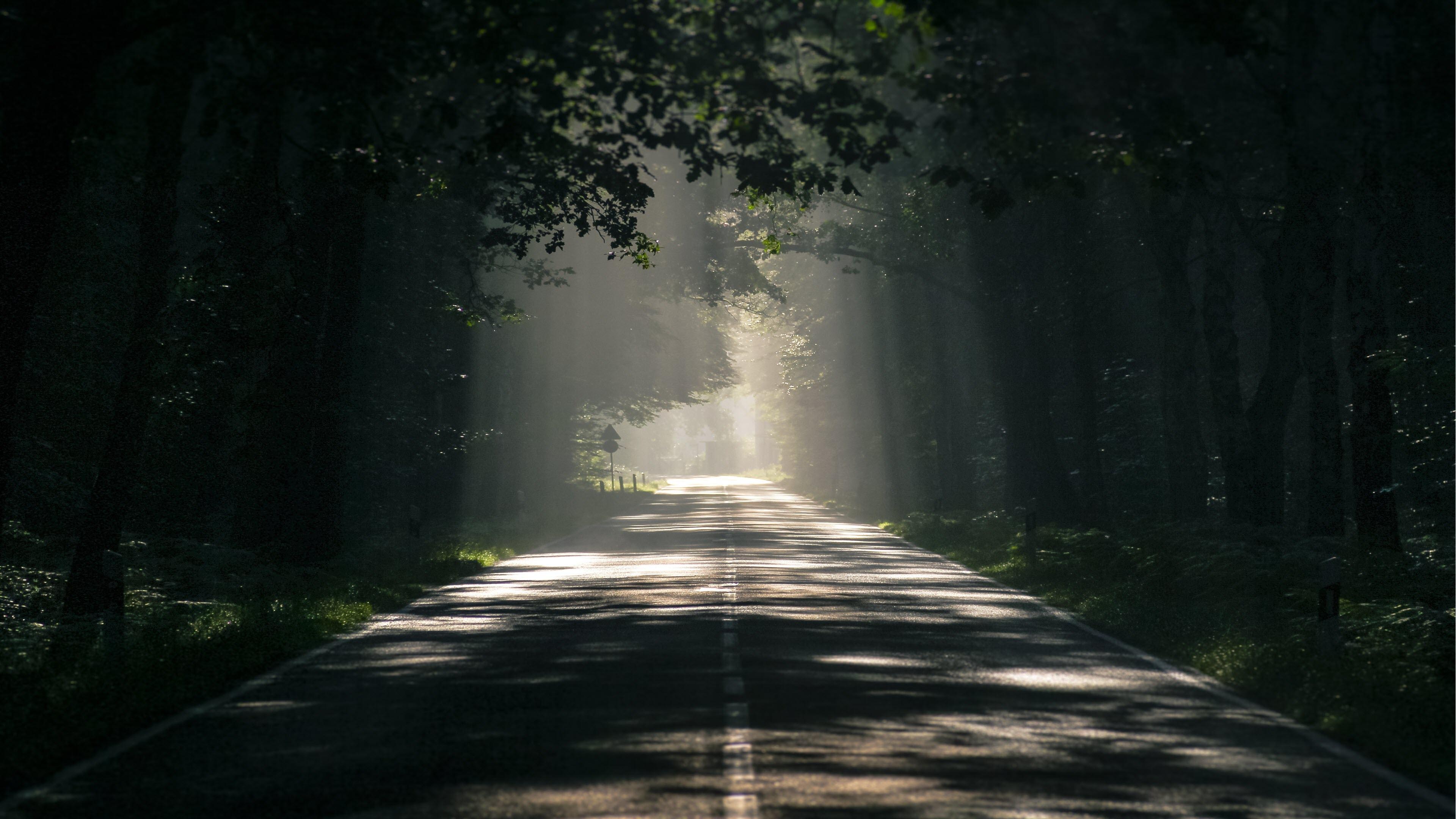 Hình nền con đường đơn giản