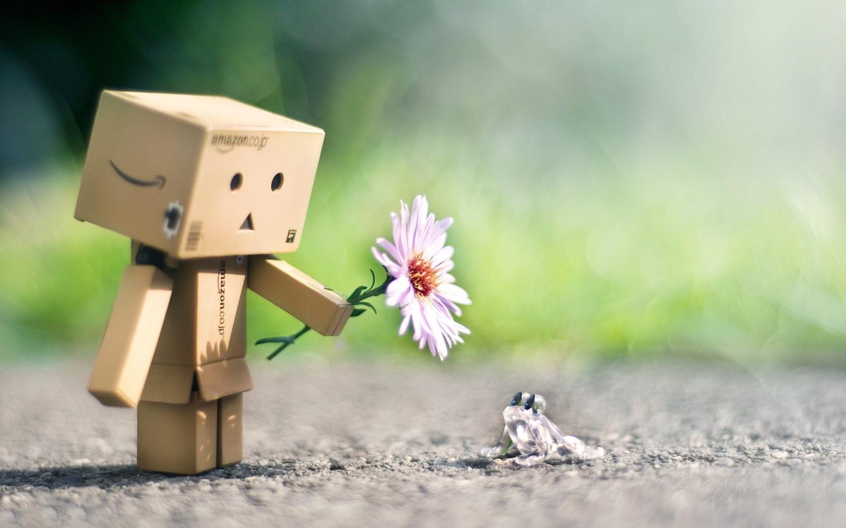 Hình ảnh người gỗ cầm hoa tặng ếch