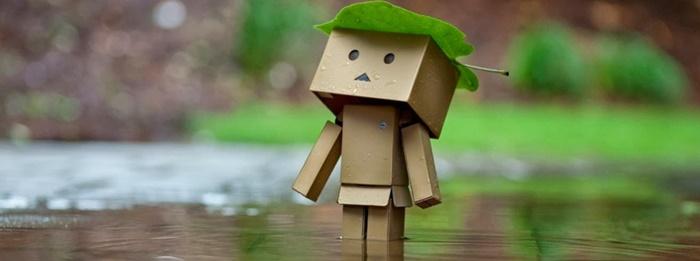Hình ảnh người gỗ đội lá xanh