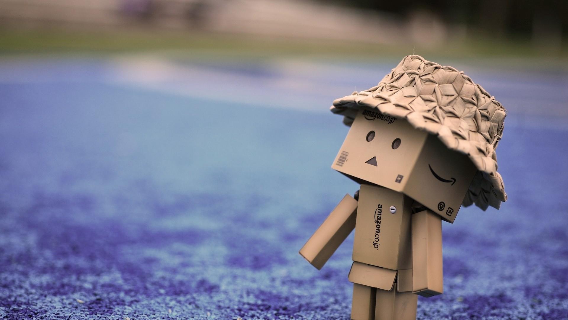 Hình ảnh người gỗ đội mũ trông rất cute