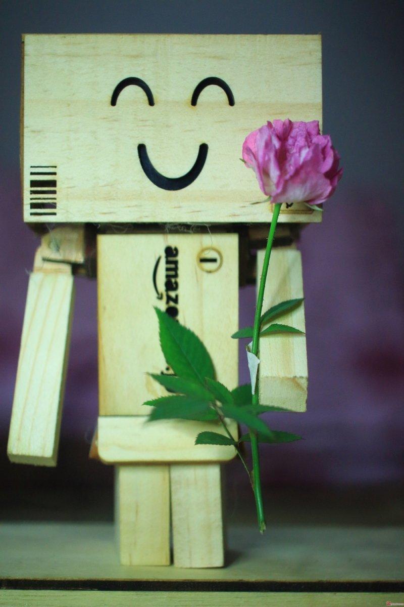 Hình ảnh người gỗ và hoa
