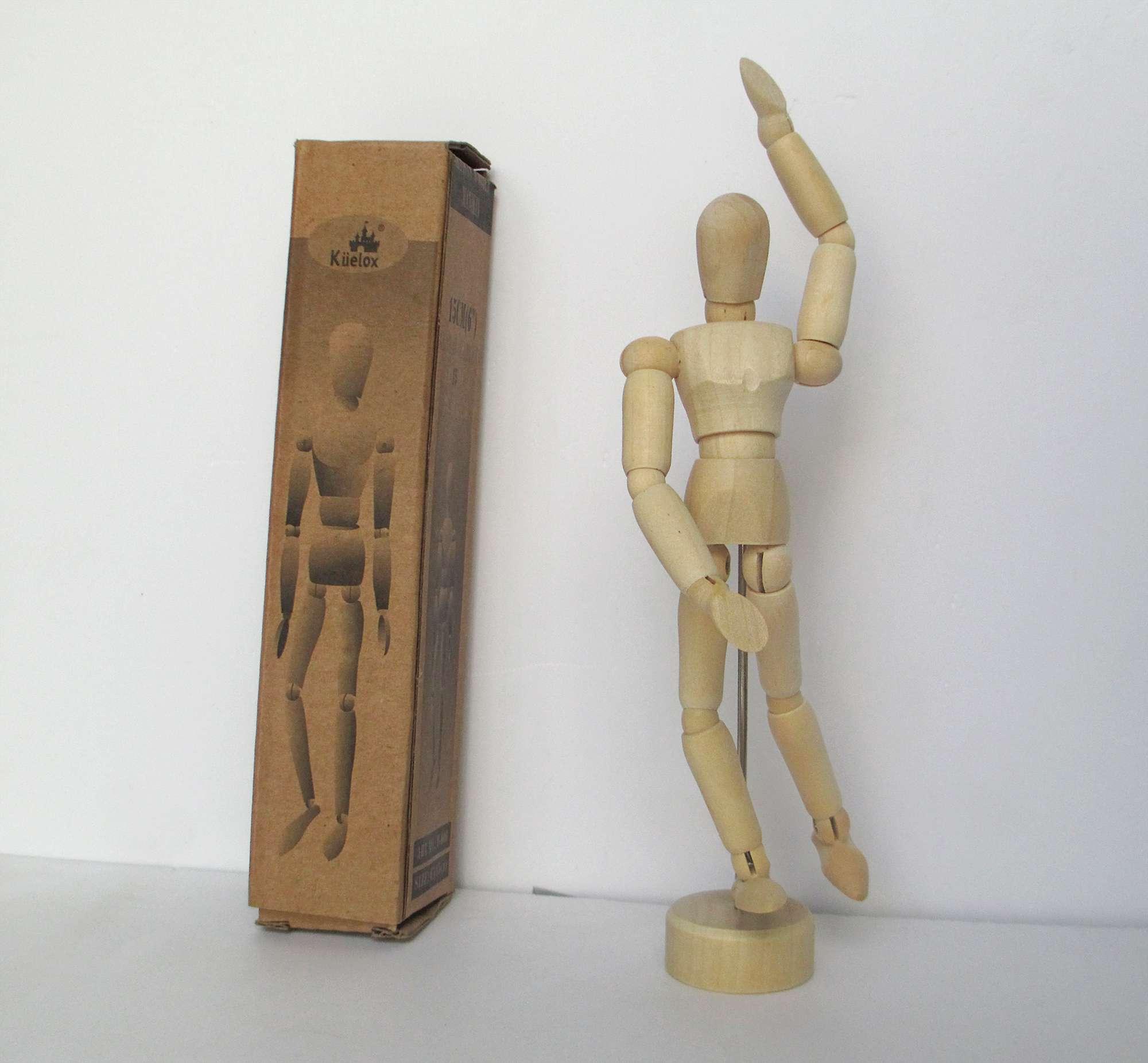 Người gỗ anatomy tạo dáng