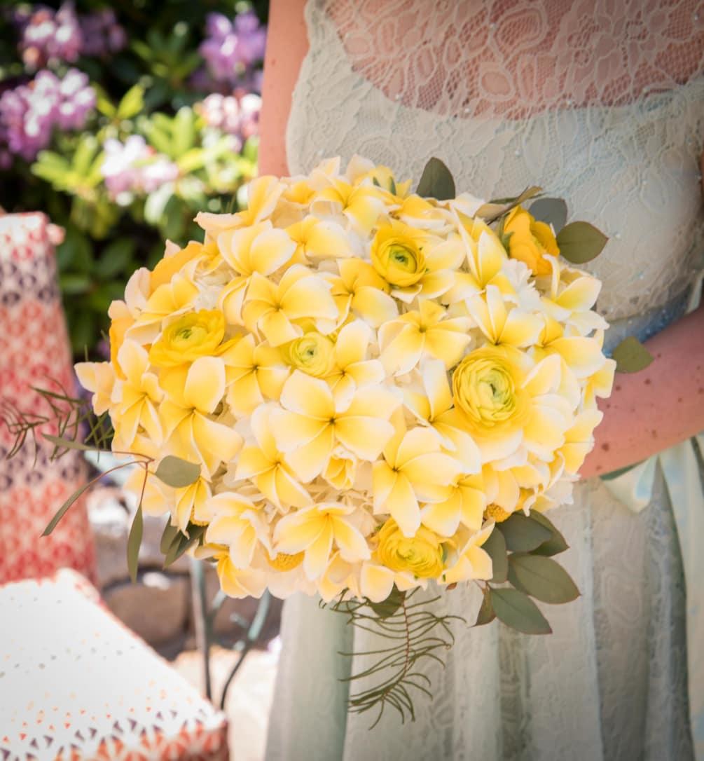 Hình ảnh bó hoa sứ đẹp