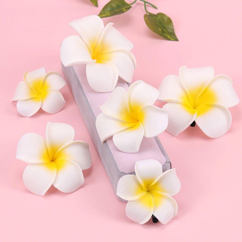 Những hình ảnh hoa sứ đẹp