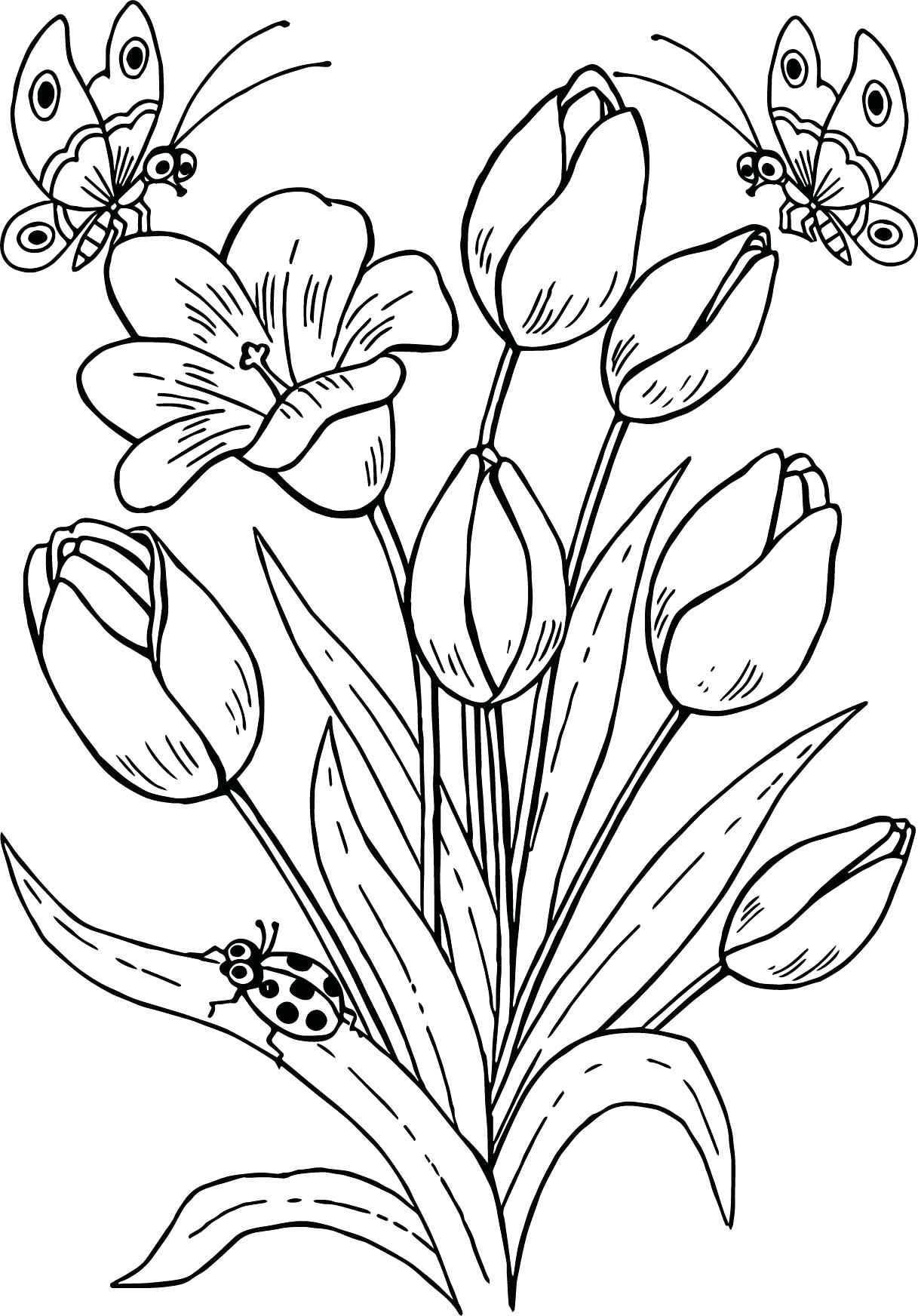 Tổng hợp tranh tô màu bông hoa đẹp