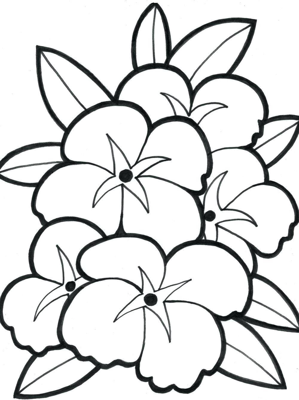 Tranh tô màu bông hoa đẹp đơn giản
