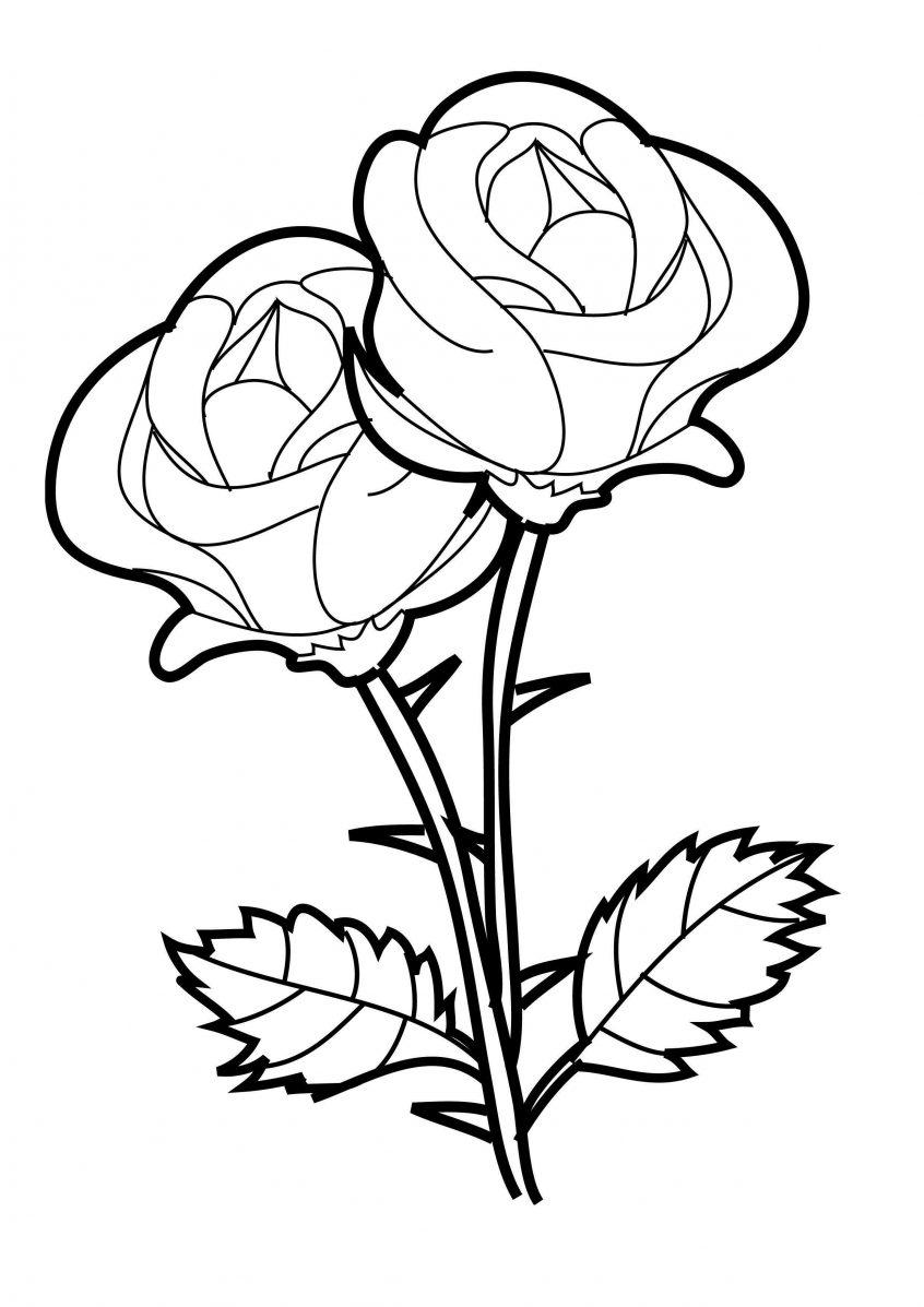 Tranh tô màu bông hoa hồng cực đẹp cho bé