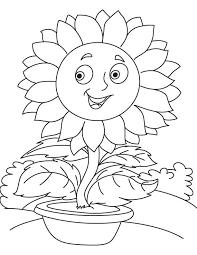 Tranh tô màu bông hoa hướng dương đơn giản đẹp