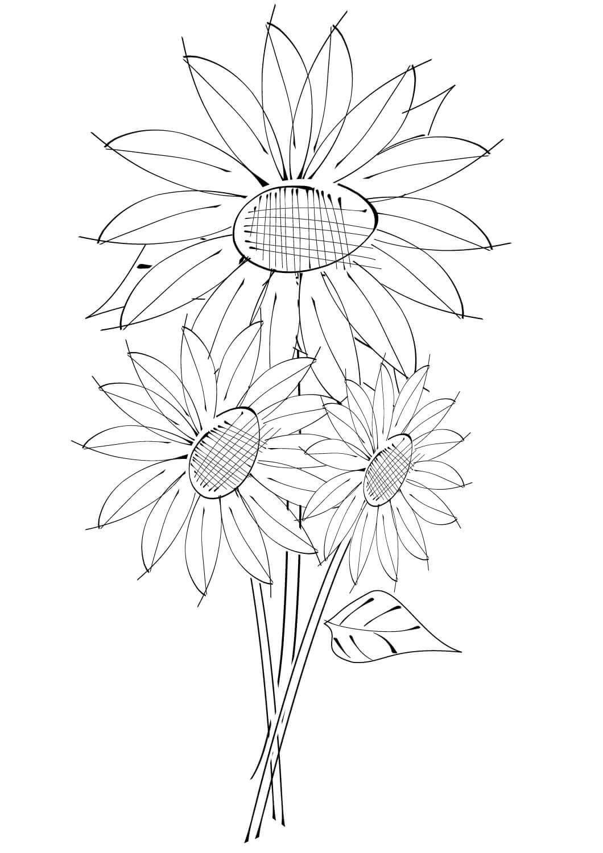 Tranh tô màu hoa hướng dương đáng yêu cho bé