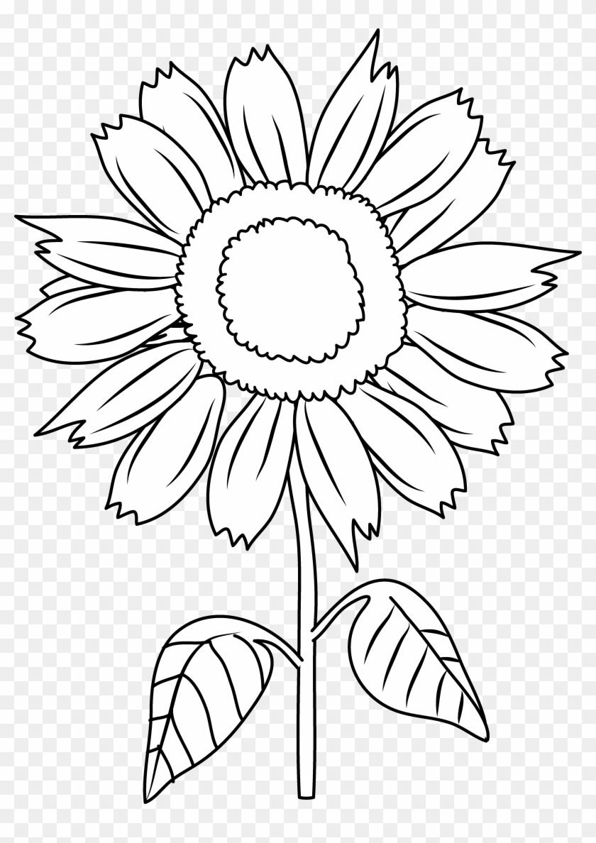 Tranh tô màu hoa hướng dương đơn giản