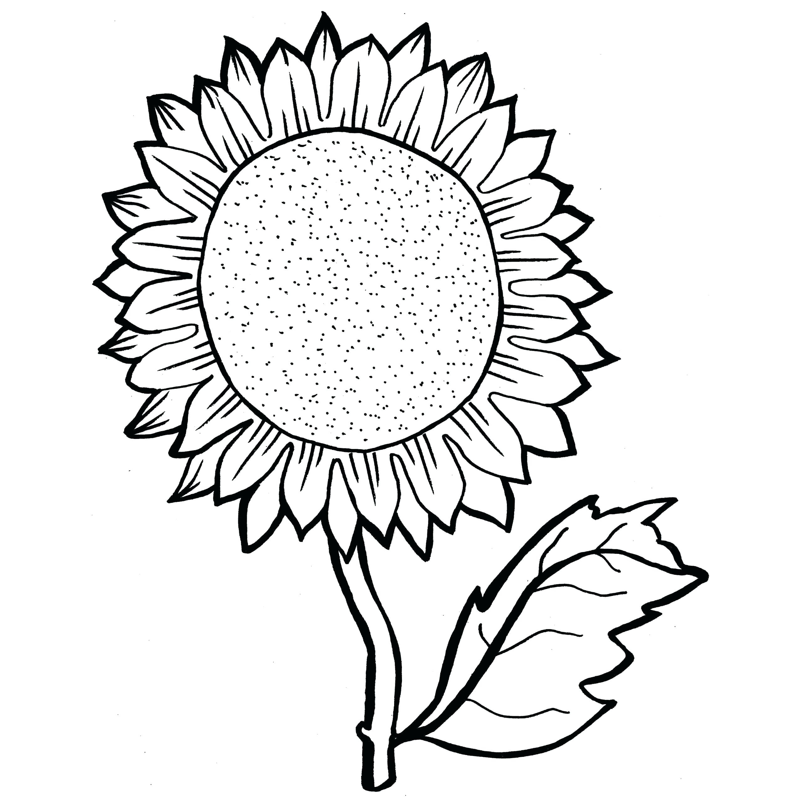 Tranh tô màu hoa hướng dương