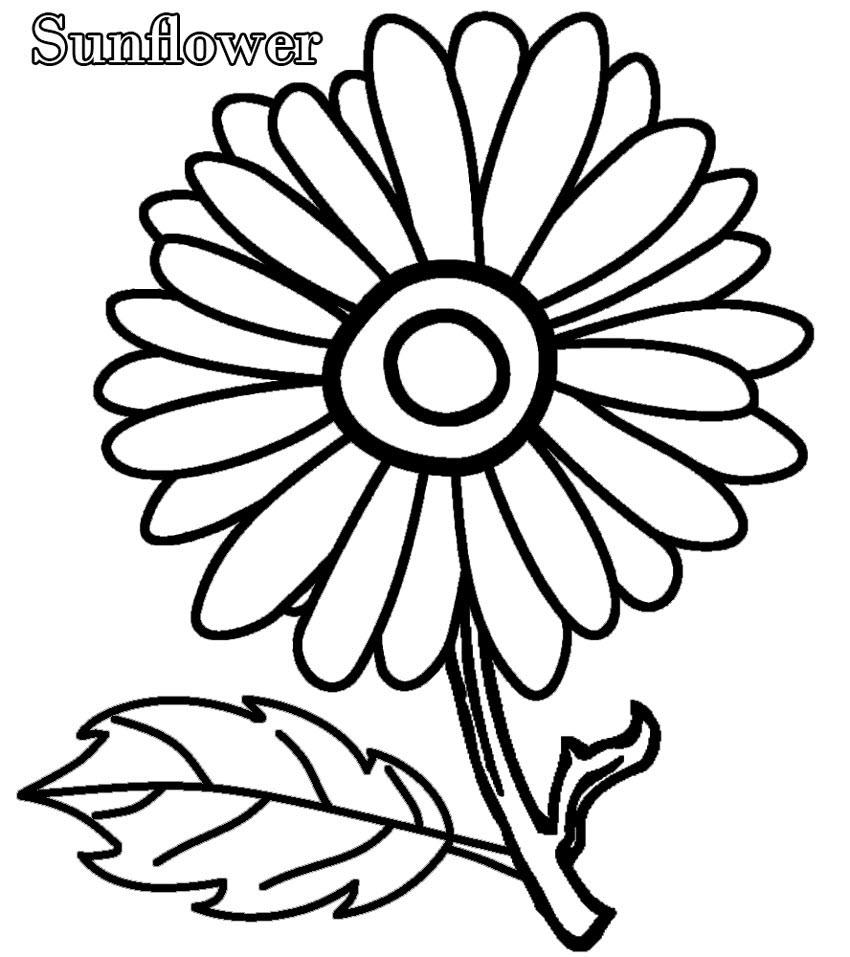 Tranh vẽ tô màu hoa hướng dương đơn giản cho bé