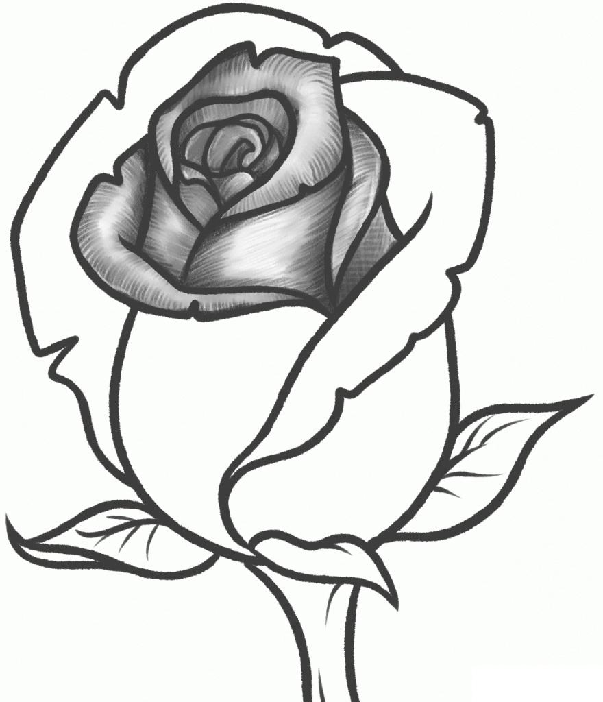 Ảnh vẽ hình hoa hồng và trái tim bằng bút chì