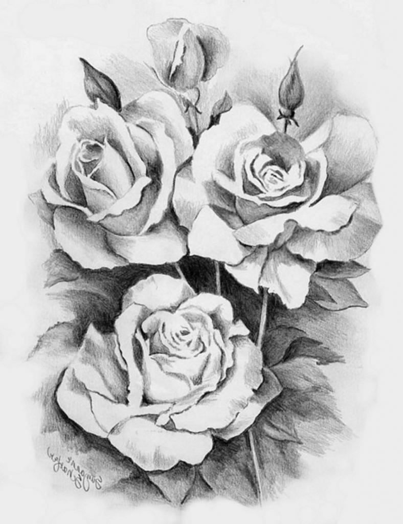 Hình ảnh bút chì hình hoa hồng đẹp nhất