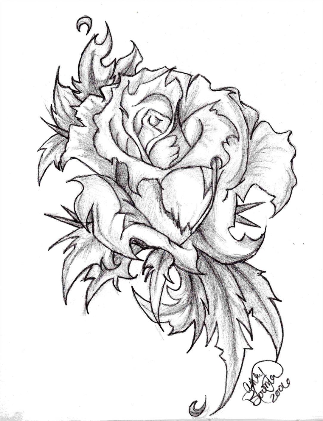 Hình ảnh hoa hồng đen trắng được vẽ bằng bút chì