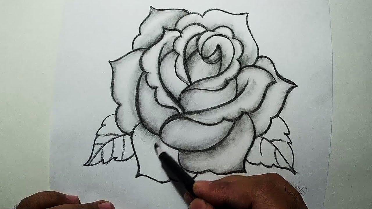 Hình ảnh hoa hồng đẹp nhất bằng bút chì