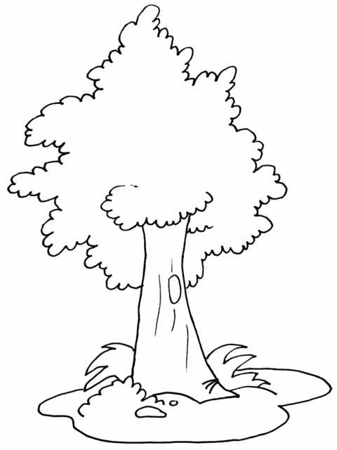 Hình vẽ tranh tô màu cây xanh