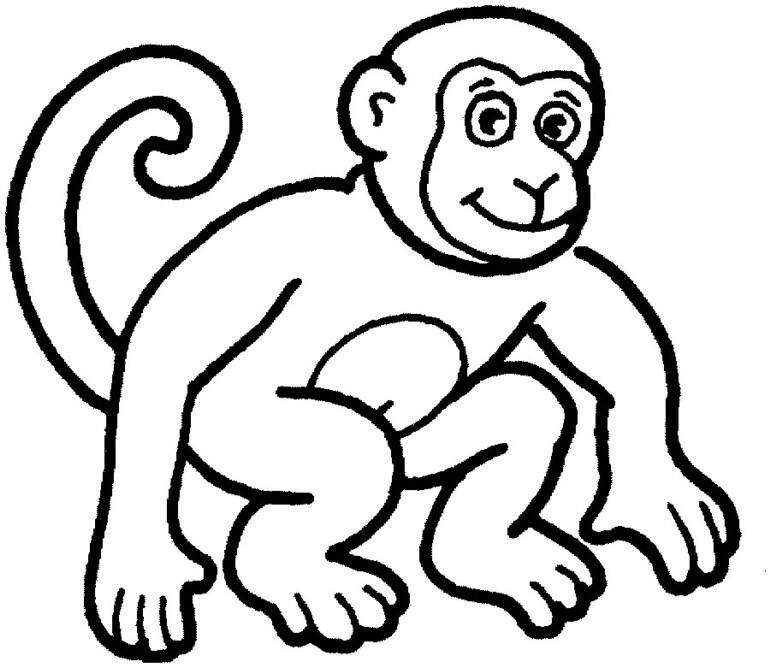 Tranh con khỉ tô màu