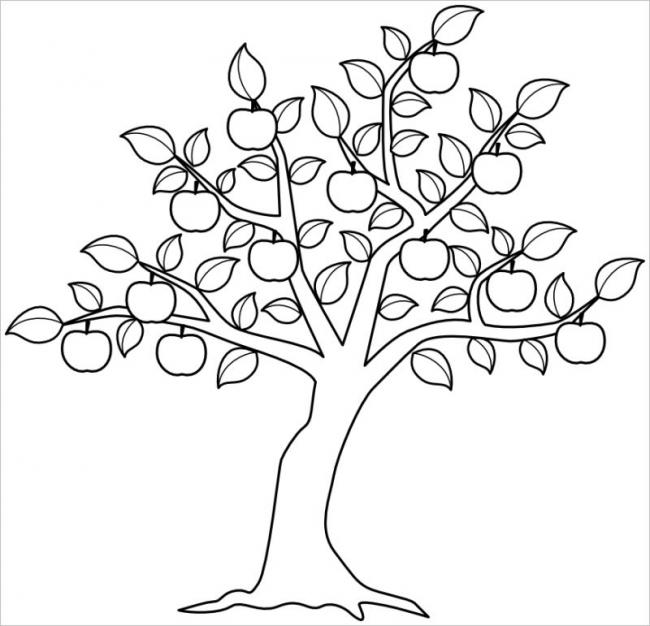 Tranh tô màu cây ăn quả