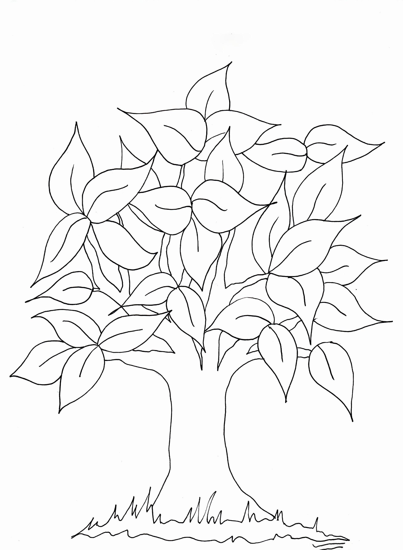 Tranh tô màu cây lá xanh