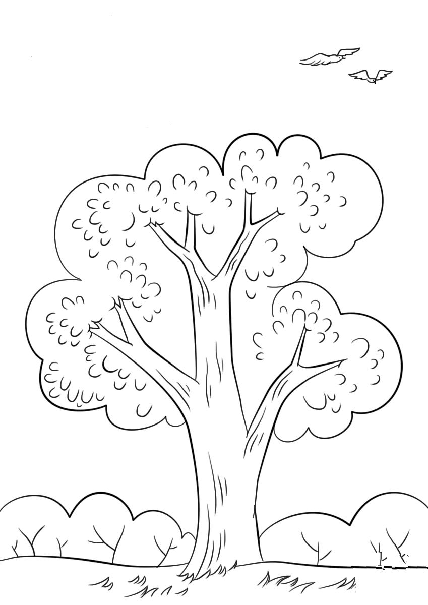 Tranh tô màu cây xanh đẹp nhất